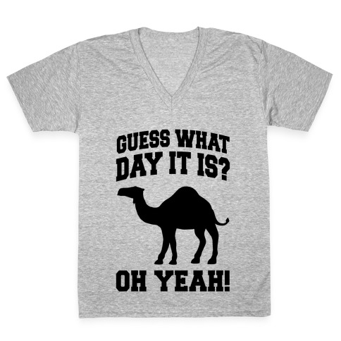 1525240f Guess What Day it is? (Hump Day Oh Yeah) V-Neck Tee