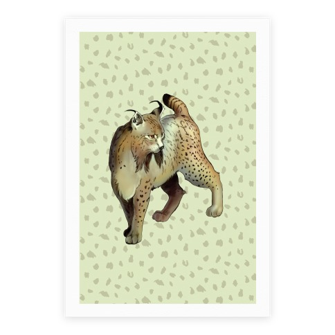 Wild Cat Lynx Poster