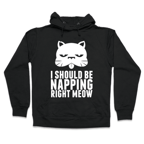 I Should Be Napping Right Meow Hooded Sweatshirt
