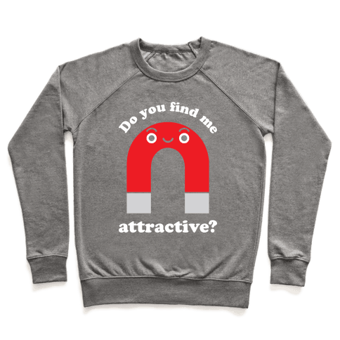 Do You Find Me Attractive? Pullover