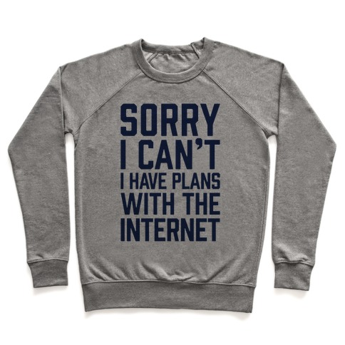 Sorry I Can't I Have Plans With The Internet Pullover