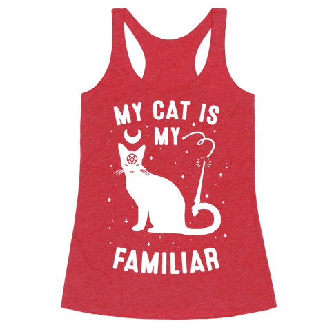 My Cat is My Familiar