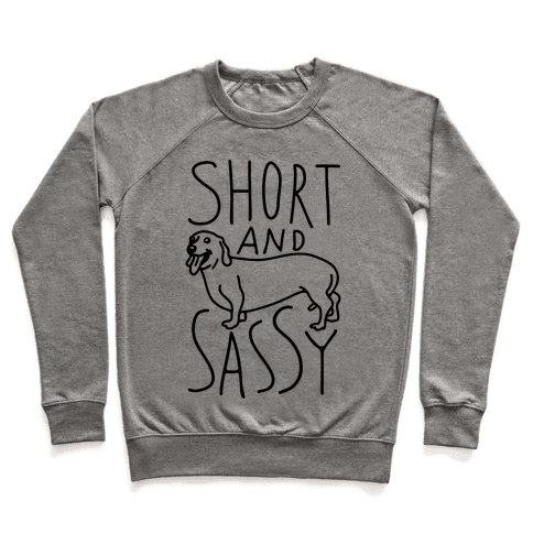 Short And Sassy Dachshund Pullover
