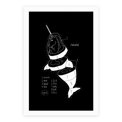 Narwhal Diagram Poster