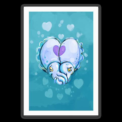 Cuddle Fish (Cuttlefish)