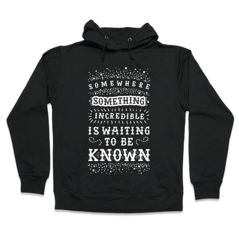 Somewhere Something Incredible Is Waiting To Be Known Hooded Sweatshirt