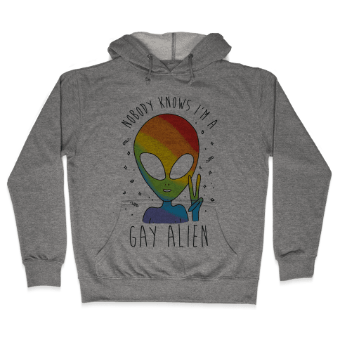 Nobody Knows I'm A Gay Alien Hooded Sweatshirt