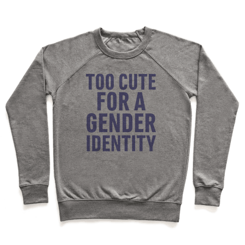 Too Cute For A Gender Identity Pullover