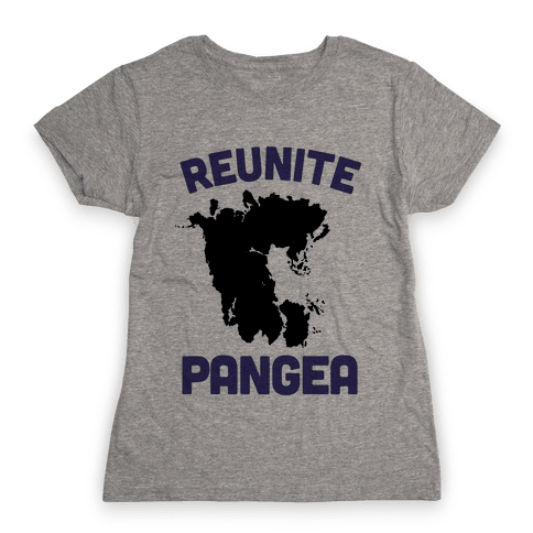 Reunite Pangea Womens T-Shirt
