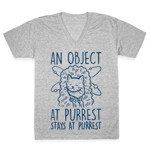 An Object At Purrest Stays At Purrest V-Neck Tee Shirt