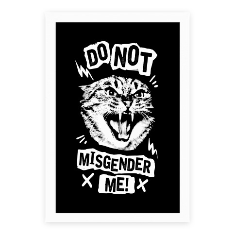 Do Not Misgender Me Poster