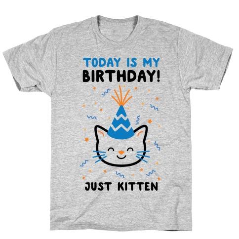 Today's My Birthday, Just Kitten Mens T-Shirt