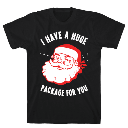 I Have A Huge Package For You Santa Mens T-Shirt