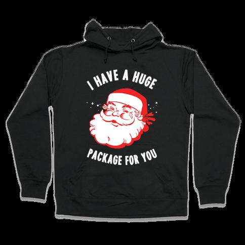 I Have A Huge Package For You Santa Hooded Sweatshirt