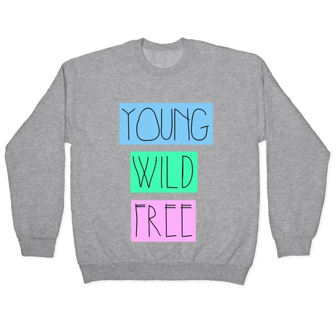 Young Wild Free Pullover