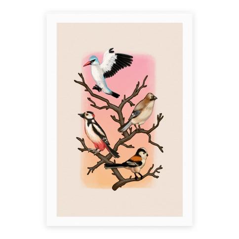 Woodland Birds Poster