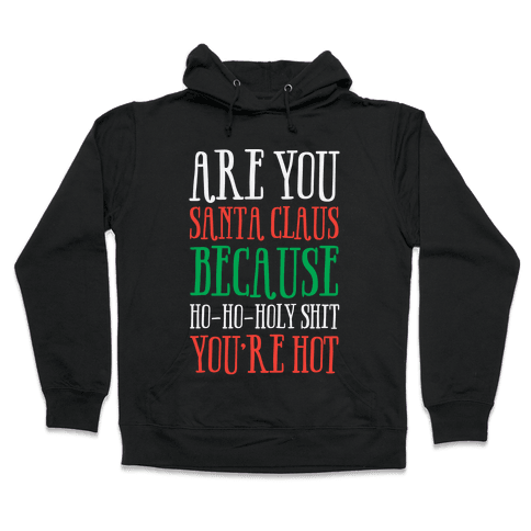 Are You Santa Claus? Because Ho-Ho-Holy Shit You're Hot Hooded Sweatshirt