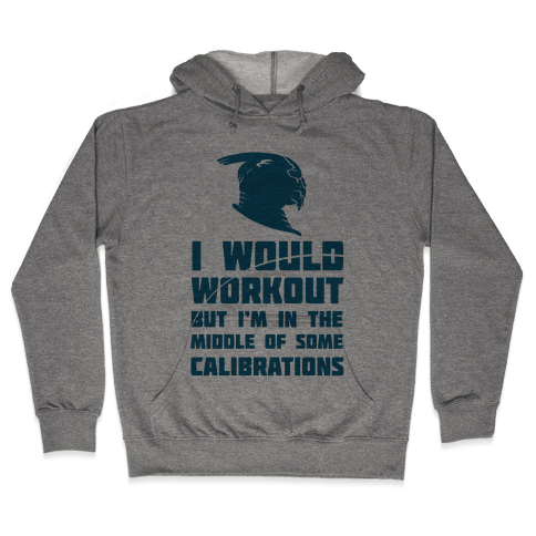 I Would Workout But I'm In The Middle of Some Calibrations Hooded Sweatshirt