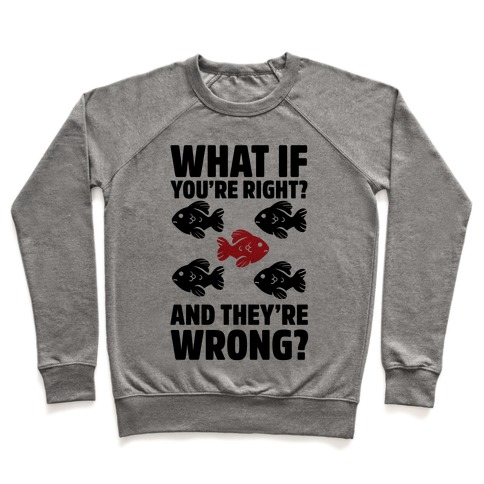 What If You're Right? And They're Wrong? Pullover