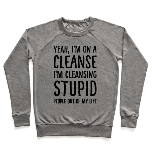 Stupid People Cleanse Pullover