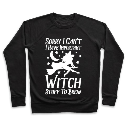 Sorry I Can't I Have Important Witch Stuff To Brew Pullover