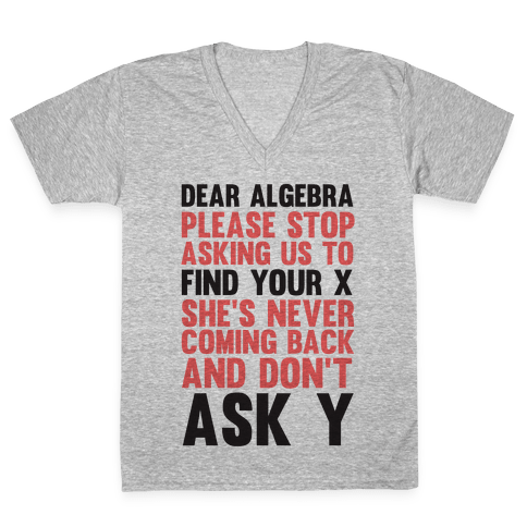 Dear Algebra V-Neck Tee Shirt