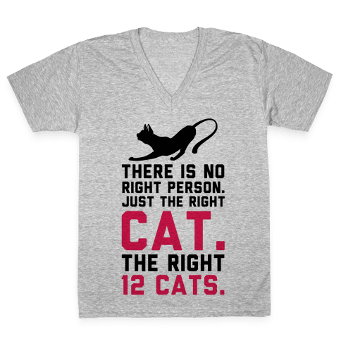 There is No Right Person. Just the Right Cat. V-Neck Tee Shirt
