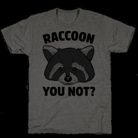 Raccoon You Not?