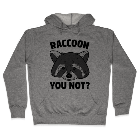 Raccoon You Not? Hooded Sweatshirt