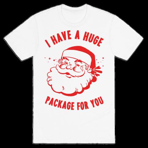 I Have A Huge Package For You Santa Mens T-Shirt