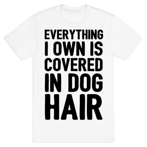 Everything I Own Is Covered In Dog Hair
