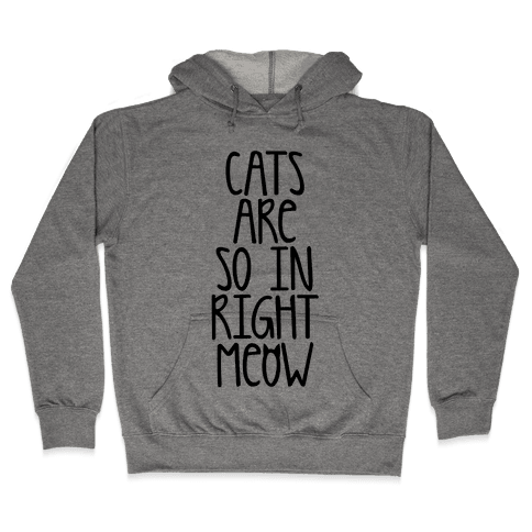 Cats Are So In Right Meow Hooded Sweatshirt