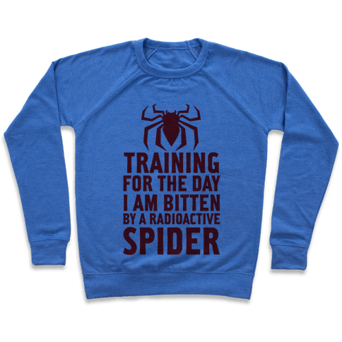 Training For The Day Pullover