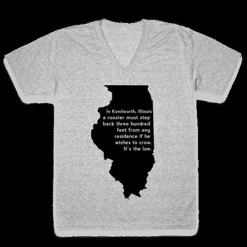 Dumb Laws V-Neck Tee Shirt