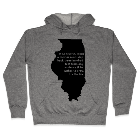 Dumb Laws Hooded Sweatshirt