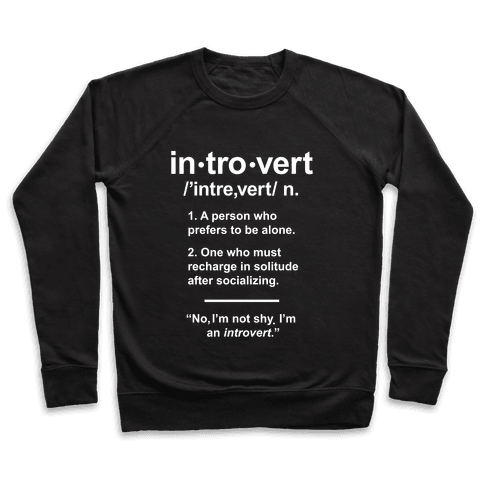 Introvert Definition Pullover