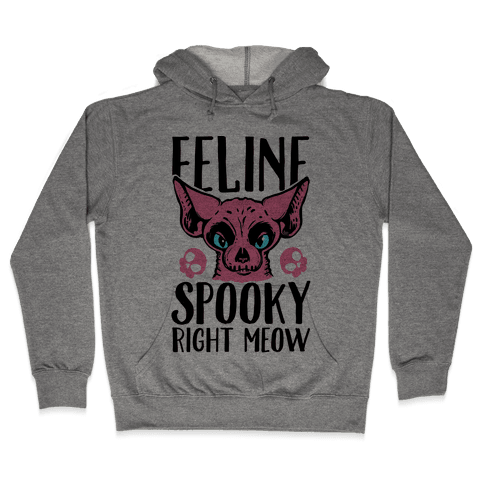 Feline Spooky Right Meow Hooded Sweatshirt