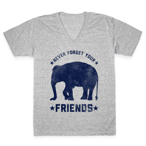 Never Forget Your Friends