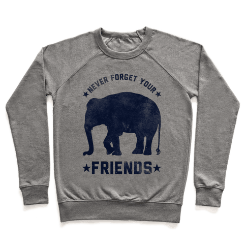 Never Forget Your Friends Pullover