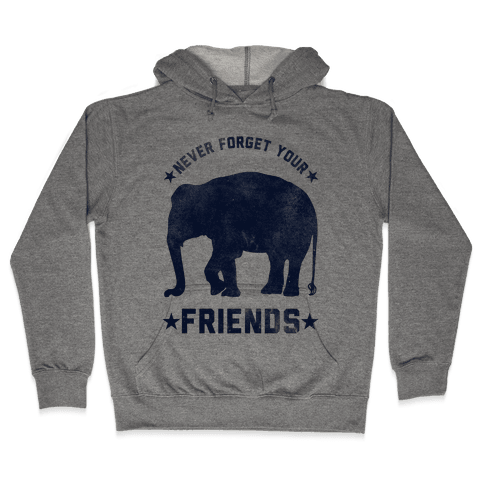 Never Forget Your Friends Hooded Sweatshirt