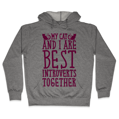 My Cat and I Are Best Introverts Together Hooded Sweatshirt