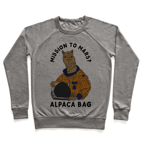 Mission to Mars Alpaca Bag Pullover