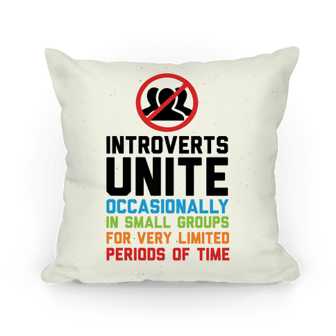 Introverts Unite! Pillow