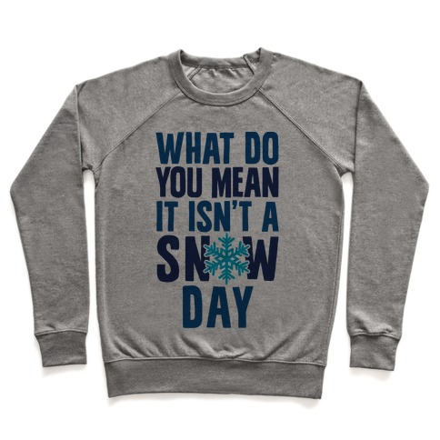 What Do You Mean It Isn't A Snow Day Pullover