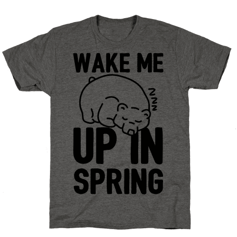 Wake Me Up In Spring