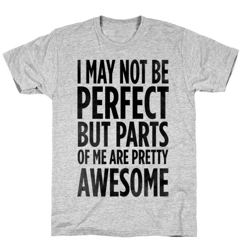 I May Not be Perfect... Mens T-Shirt