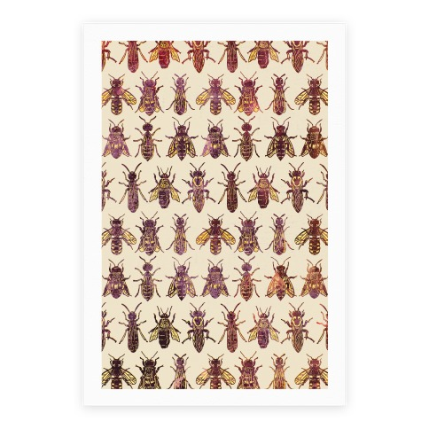 Bee Species Pattern Poster