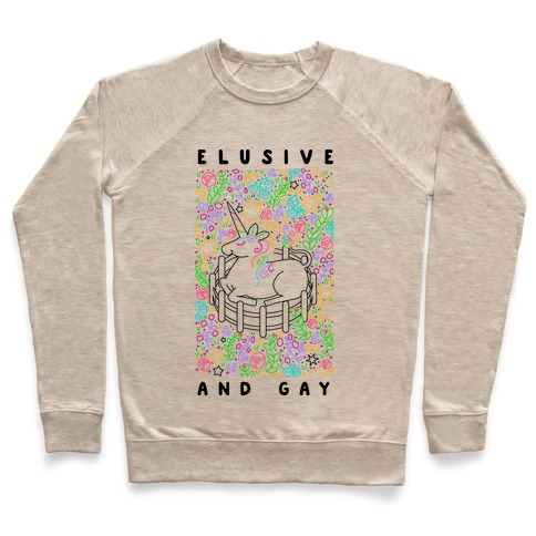 Elusive And Gay Unicorn  Pullover