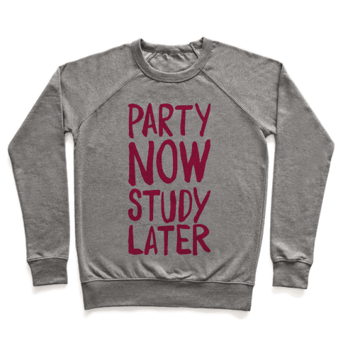 Party Now, Study Later Pullover