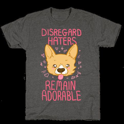 Disregard Haters